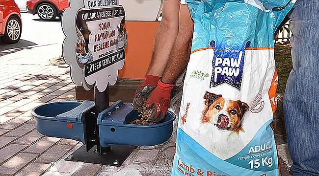 Çan Belediyesi'nden Sokak Hayvanları İçin Duyarlı Uygulama