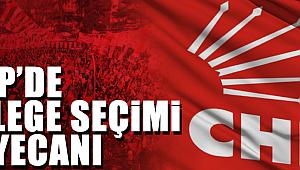 CHP'de Delege Seçimi Heyecanı Yaşandı