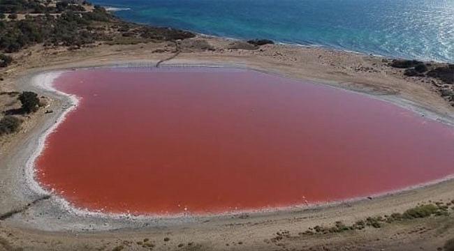 Kalp Şeklindeki Pembe Göl'de Araştırma Çalışmaları Başladı