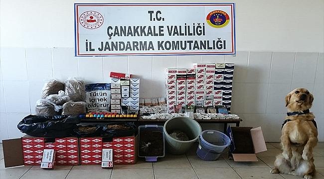 LAPSEKİ'DE KAÇAK TÜTÜN OPERASYONU!